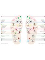 Апликатори - лечебна терапия на стъпалата FIGURA  Гарабитов център  Красота и здраве