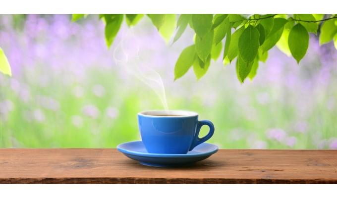 Как да отслабнеш със зелен чай?